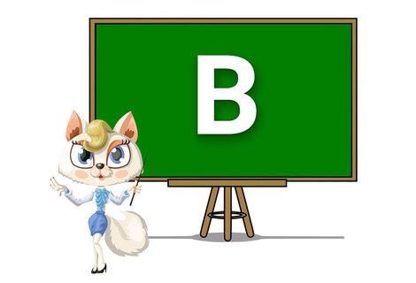 Teacher b