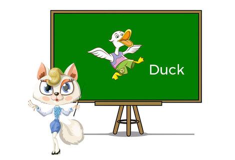 Pets duck