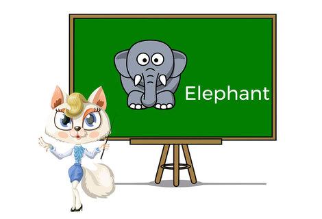 Pets elephant
