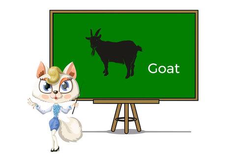 Pets goat