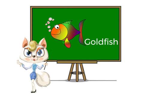 Pets goldfish