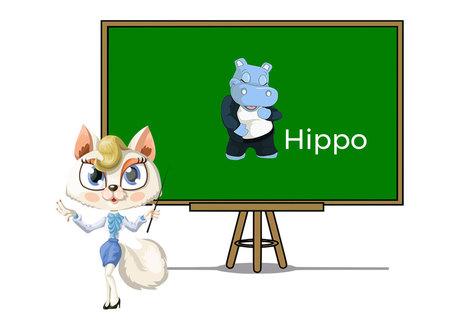 Pets hippo