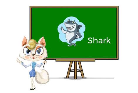Pets shark