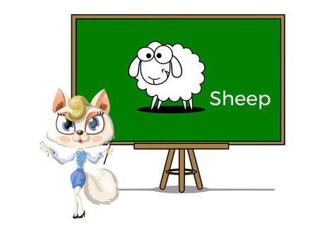Pets sheep