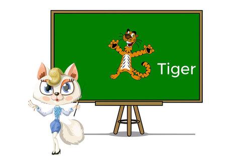 Pets tiger