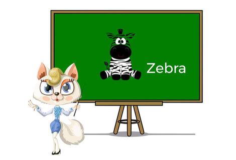 Pets zebra