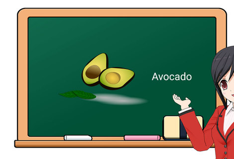Teacher avocado