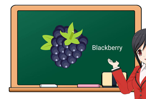 Teacher blackberry