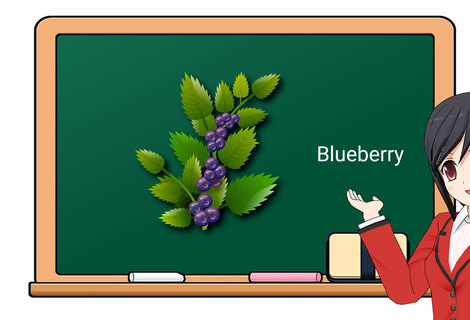 Teacher blueberry
