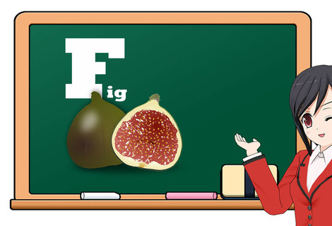 Teacher fruit f