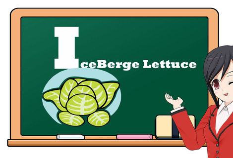 Teacher fruit i