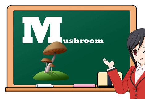Teacher fruit m